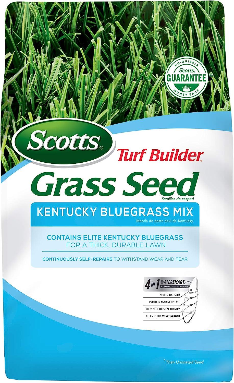 Special Campaign Scotts Turf Builder Grass Kentucky Bluegrass in Mix-7 Use Fu Sacramento Mall lb