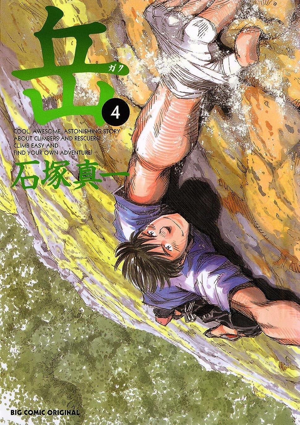 流星パネル伝説岳(4) (ビッグコミックス)