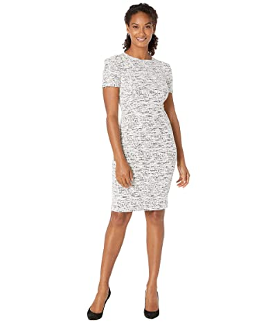 Calvin Klein Short Sleeve Tweed Sheath Dress (Black/Cream) Women