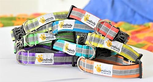Reflective Dog Collars (Multicolour) - Set of 5