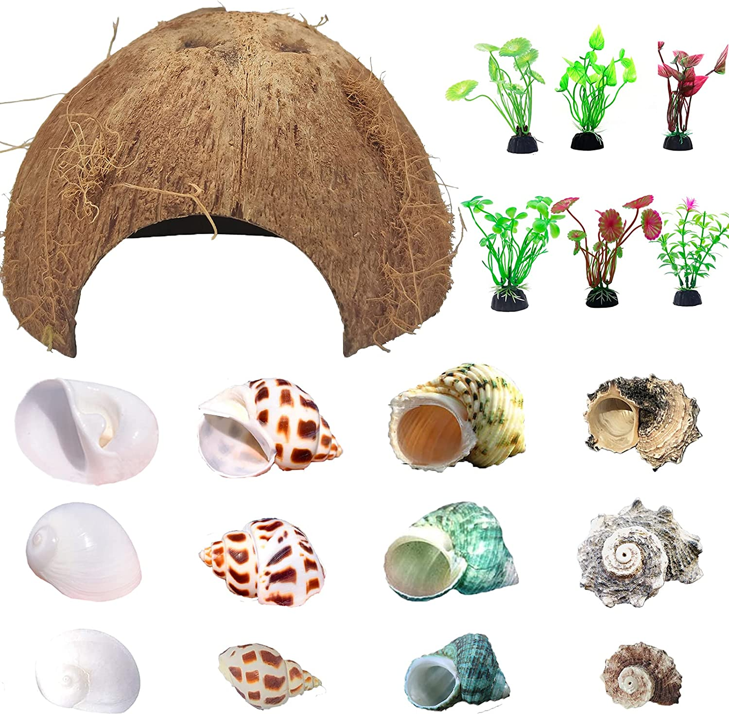 Hermit Max 67% OFF Crab Shells Natural Coconut Plants Animer and price revision D Artificial Shell Hut