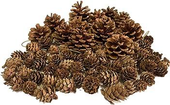 D-Doner Natural Pine Cones, 12 pcs Big Pine Cones with 60 pcsRustic Mini Brown Pine Cones,Decorative Fall Winter Holiday H...