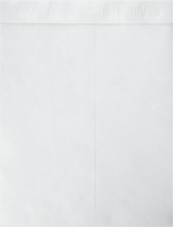 Sparco Plain Open End Cheap mail order sales Envelopes Catalog New mail order Tyvek