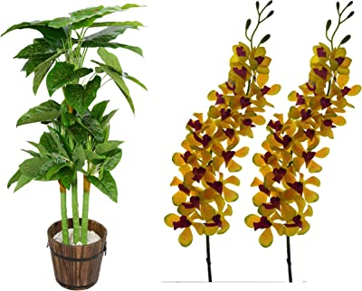 Fourwalls Gorgeous Artificial Big Mokara Orchid (Yellow) + Artificial Miniature PVC Silk Floor Plant with Big Leaves Without Pot (110 cm Tall, Green/Red)