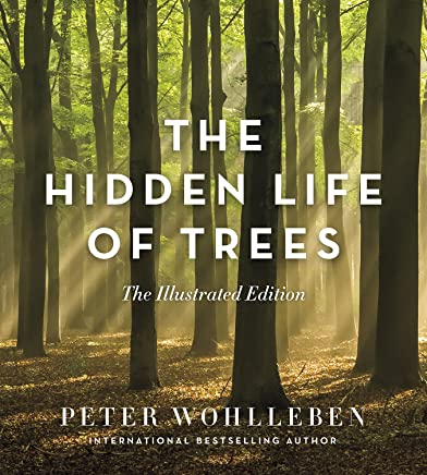 Hidden Life Of Trees Illustrated Version