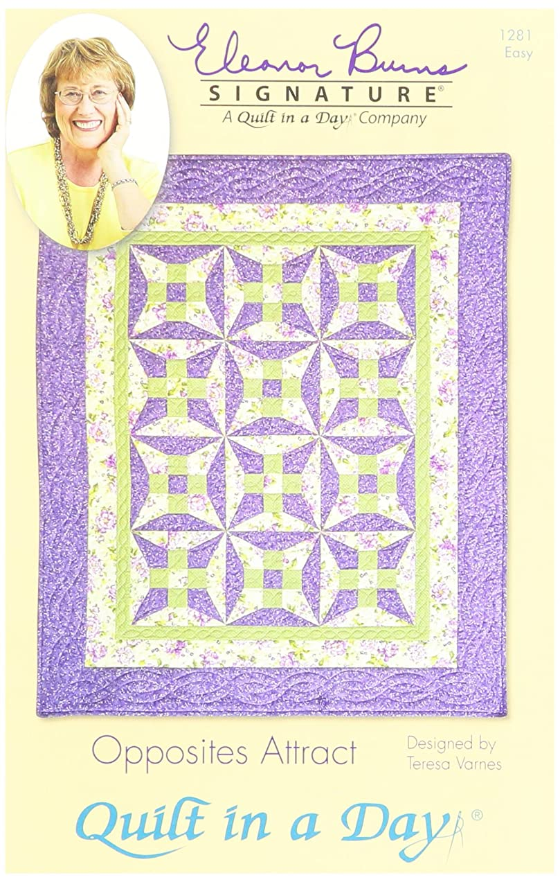 Quilt In A Day EB-1281 Eleanor Burns Pattern, Opposites Attract
