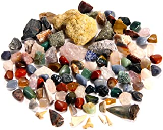 BEST Rock Collection. Includes huge Megalodon Shark Tooth, 2 large Geodes and 3 LBS. (about 100 specimens) and IDENTIFICATION CHART.