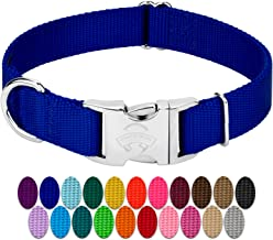 dog collars with buckle