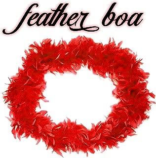 Windy City Novelties Feather Boa