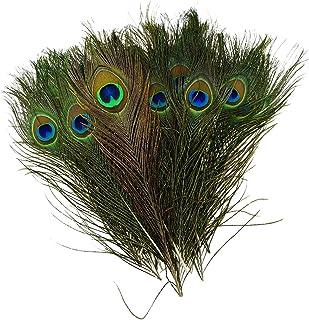 comprar comparacion TOOGOO(R) Natural Las plumas del pavo real 10-12 pulgadas de largo (40 piezas por paquete)