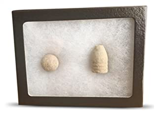 Civil War Collectible - Authentic Bullets in Display Case by Old Dominion LLC