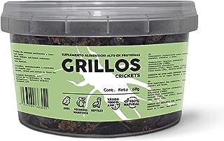 Feedect Grillo Deshidratado (60g) - Complemento Alimenticio
