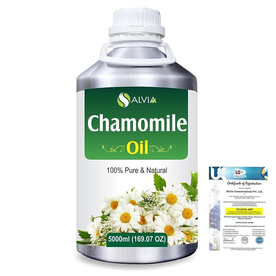 太平洋諸島腹持ってるChamomile (Matricaria chamomile) 100% Natural Pure Essential Oil 5000ml/169fl.oz.