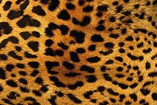 18 x 12 Leopard HTV Printed Heat Transfer Vinyl Craft Cheetah Pattern Sheet