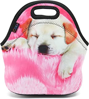 Best lunch box images Reviews
