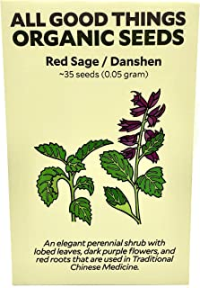 Red Sage/Danshen (Salvia miltiorrhiza) Seeds (~35) by All Good Things Organic Seeds: Certified Organic, Non-GMO, Heirloom, Open Pollinated Seeds from the United States