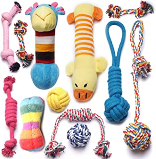 hollow chew toys for puppies