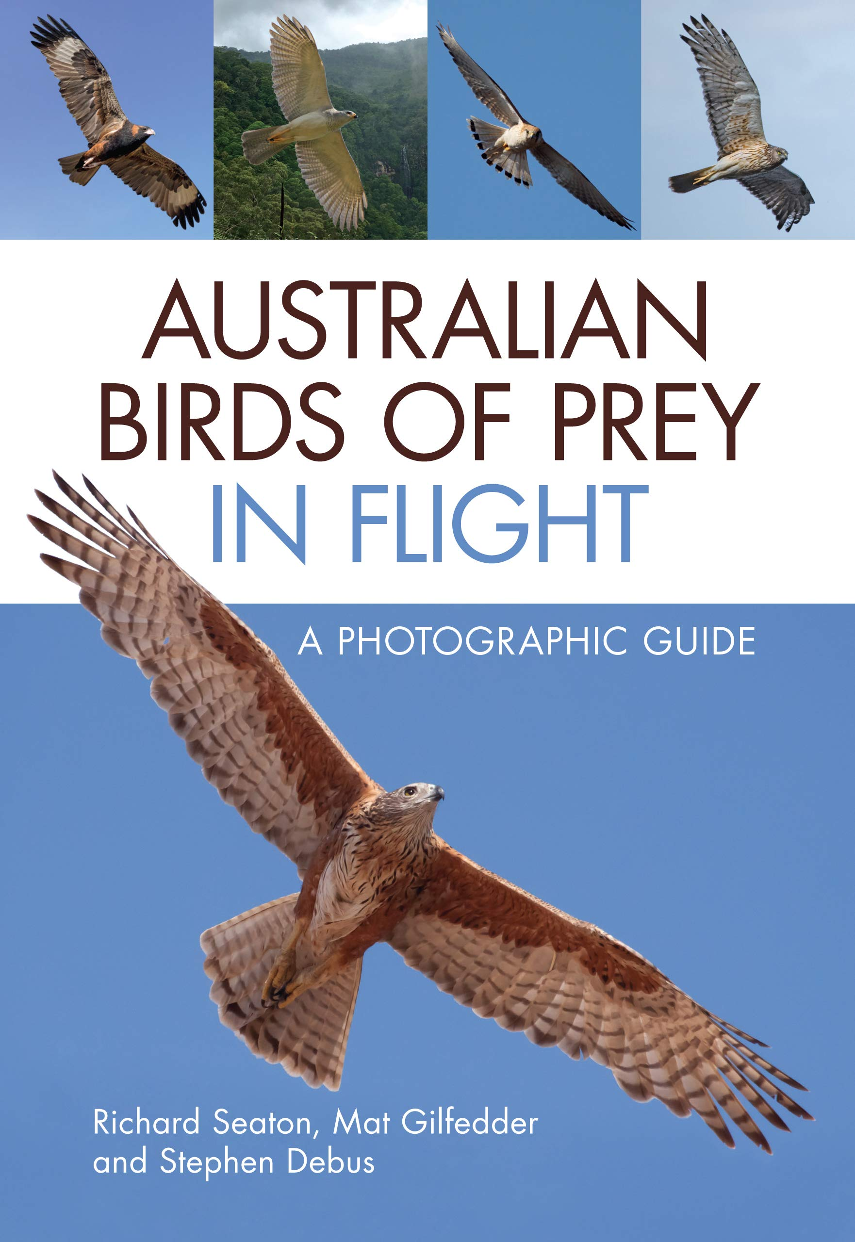 Image OfAustralian Birds Of Prey In Flight: A Photographic Guide