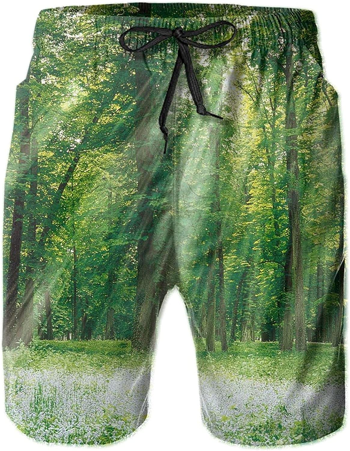 Men's The Sun Shines Through Green Swi Dry Trees Short Quick Super beauty product restock quality San Diego Mall top
