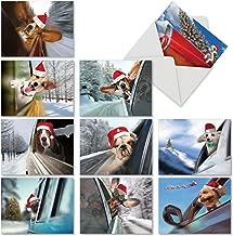 Best tropical christmas card sayings Reviews
