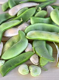 Henderson Bush, Lima Bean Seeds