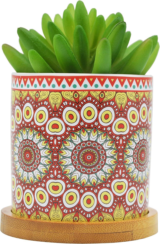 Cute Mandalas Ranking TOP10 Style Ceramic Succulent w Pots Plant Flower Very popular! Cactus