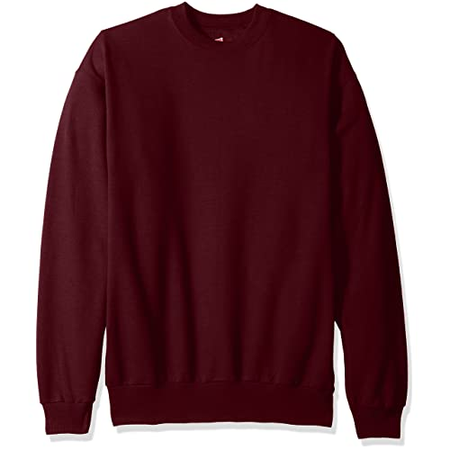 Hanes Men s Ecosmart Fleece Sweatshirt f7287ea0204a