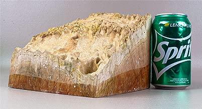 Live Edge Yellow Box Burl Hollow Form Bowl, Wood Turning Blank YBX157