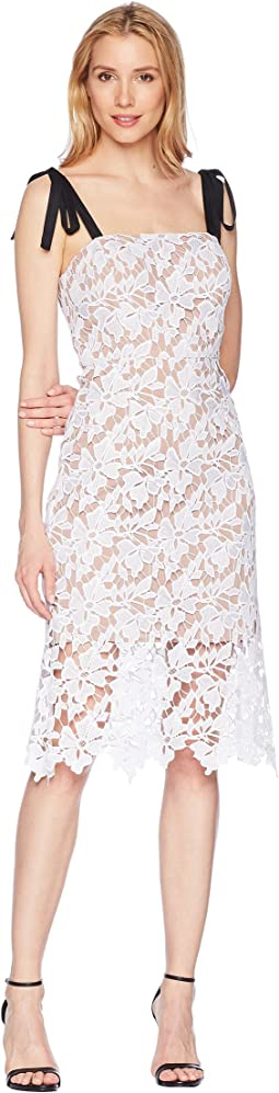 Donna Morgan Lace Dress with Contrast Self-Tie Shoulder