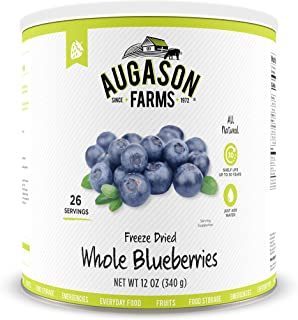 freeze dried blueberries bulk