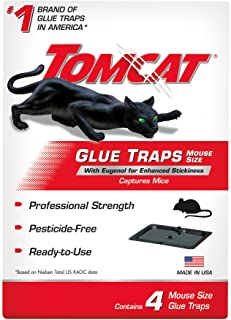 Tomcat Glue Traps Mouse Size with Eugenol for Enhanced Stickiness, Captures Mice and Other Household Pests, Professional Strength, Pesticide-Free and Ready-to-Use, 4 Glue Traps