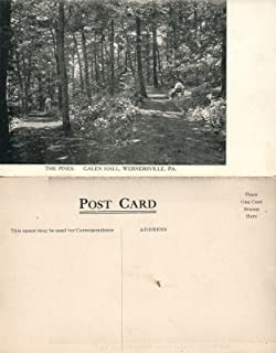 WERNERSVILLE PA GALEN HALL hotel THE PINES ANTIQUE POSTCARD