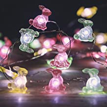 MIYA LIFE Easter Bunny Rabbit String Lights 10 ft 40 LEDs Copper Wire with The Remote &Timer for Spring Festive Patio Birt...