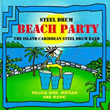 Steel Drum Beach Party
