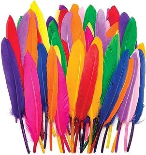 Baker Ross Mini plumes colorées, fournitures de loisirs créatifs pour enfants (Lot de 80)