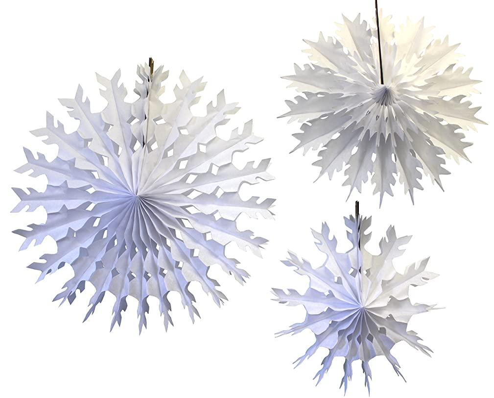Hanging Tissue Paper Snowflakes, White, Set of 3 (15 inch, 19 inch, 22 inch)