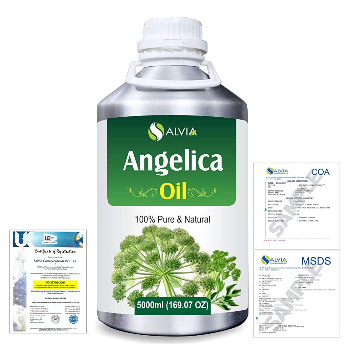 内部ごみマウスピースAngelica (Angelica archangelica) 100% Natural Pure Essential Oil 5000ml/169fl.oz.