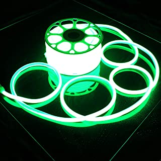 Russell Decor LED Neon Rope Lights Flexible Waterproof SMD Tube Lights (Green, 100)