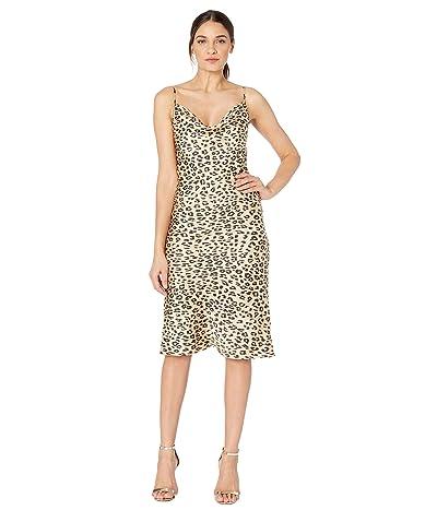 Bardot Leopard Slip Dress (Leopard) Women