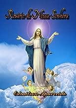 O Santo Rosário: 20 Mistérios do Amor de Deus (Portuguese Edition)