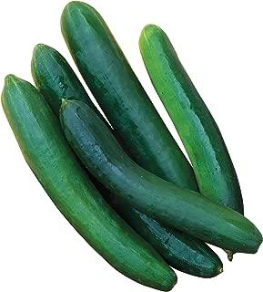 sweet success cucumber seeds