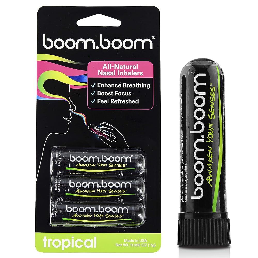 仮称邪悪な統合アロマテラピー鼻吸入器(3パック)by BoomBoom | すべての自然植物療法エッセンシャルオイル気化器| Stuffy Noseからのインスタントリリーフ| 素晴らしいフレーバーメントール、ペパーミント、ユーカリ(バラエティーパック) (オレンジ+パッションフルーツ+マンゴ+レモン)