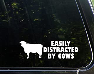 Sweet Tea Decals Easily Distracted by Cows - 8 3/4