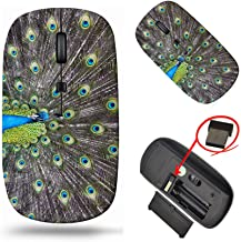 MSD Laptop Wireless Mouse, Computer USB Wireless Mouse, 2.4G Travel Mice, 1000 DPI for Notebook PC Laptop Computer MacBook...