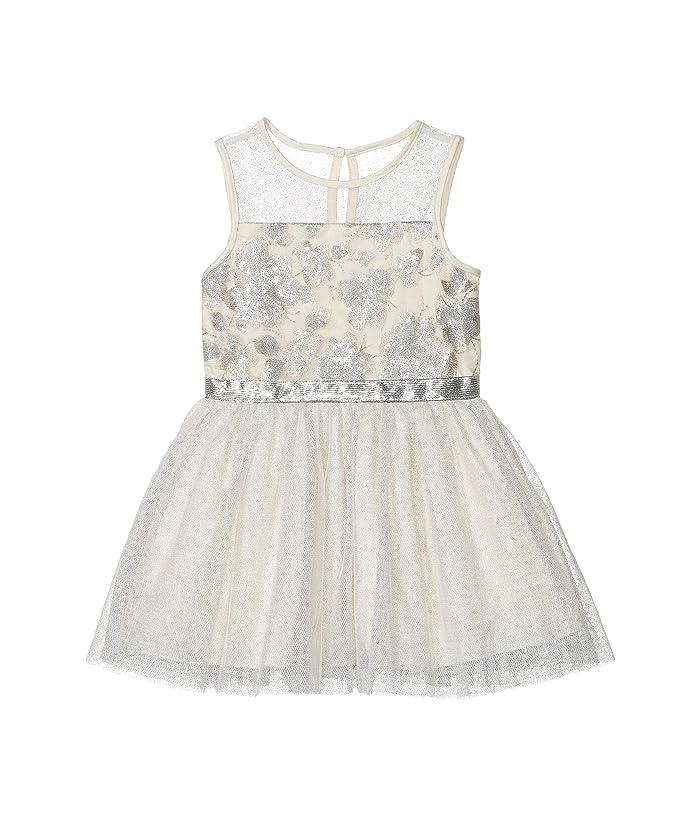 BCBG Girls  Embroidered Mesh Metallic Dress (Toddler/Little Kids) (Winter White) Girls Dress