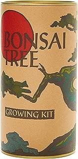 Bonsai Tree (Rocky Mountain Juniper) | Seed Grow Kit | The Jonsteen Company