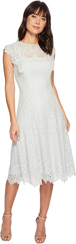 Tahari by ASL Lace Flutter Sleeve Midi Dress