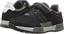 Geox Kids - Alfier 1 (Toddler/Little Kid)