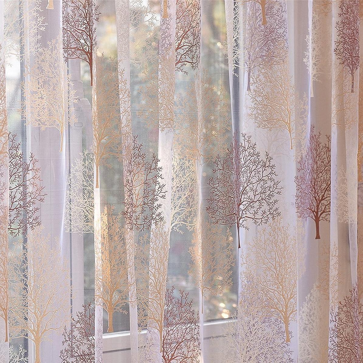 オートマトン芸術的飼料TeFuAnAn レースカーテン 透けない UVカット薄手のカーテン 100cm×250cm 遮熱 洗える UVカットミラーレースカーテン 装飾ホーム ウインドウ窓 寝室 居間 子供の部屋用 一枚入り