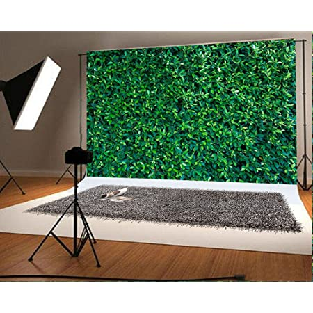 7x10 FT Vinyl Photography Background Backdrops,Poinsettia Flowers Fresh Green Branches Natural Swirls Border on Striped Backdrop Background for Photo Backdrop Studio Props Photo Backdrop Wall
